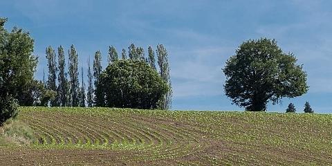 Lire la suite de Appels à projets PENAP - agri-lyonnaise.top