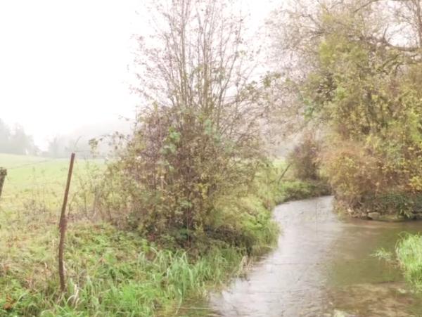 Lire la suite de [VIDEO] Les zones tampons humides artificielles sur les exploitations des lycées agricoles