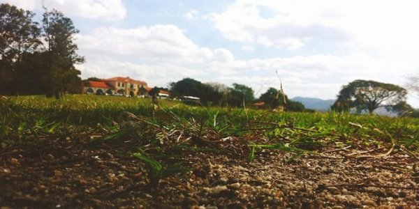 Lire la suite de [ARTICLE] Restez souple avec l'agriculture de conservation