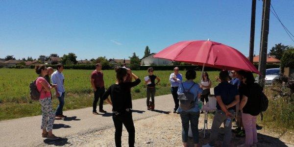 Lire la suite de Visite de terrain pour les contributeurs de la filière lentille de l'Est lyonnais