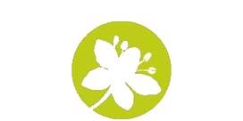 Lire la suite de Formation Légumes secs en AB